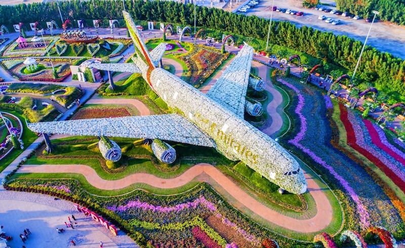 miracle garden aereo