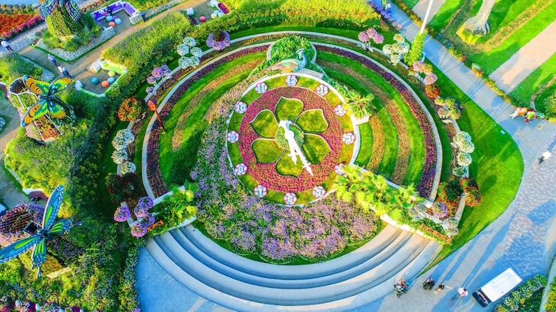miracle garden 45