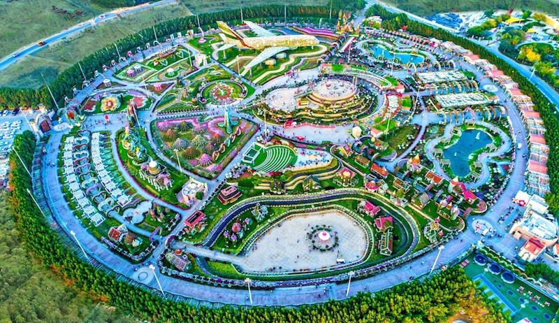 miracle garden dubai 1