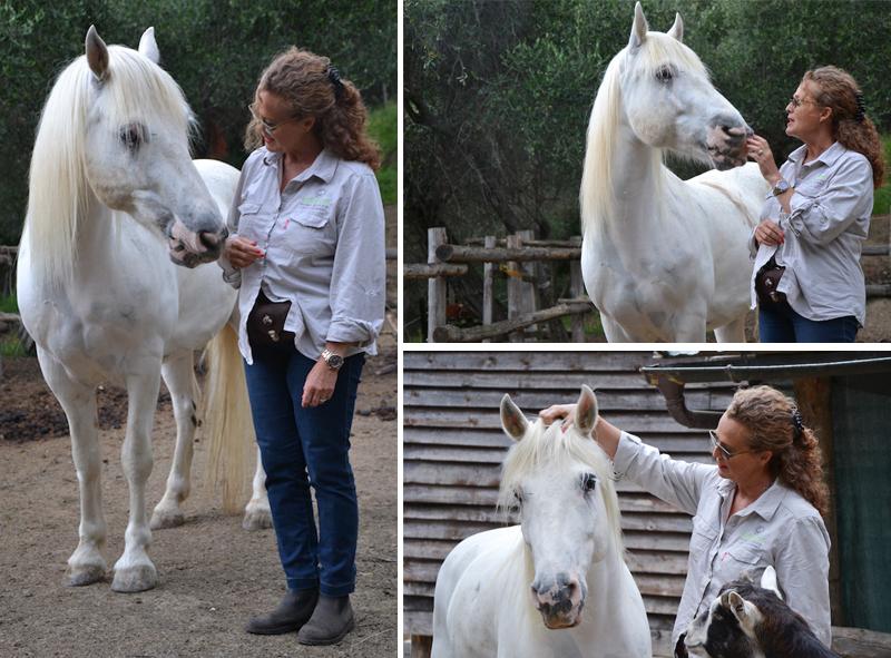 villa rosetta paola cavalli